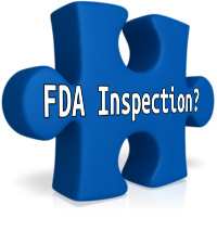 FDA Inspection Puzzle